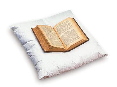 Book Display Pillow