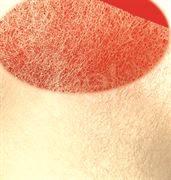 tengu-red-dot